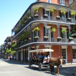 Favorite NOLA Food Tips